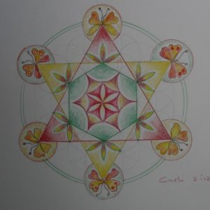 Flower of Life (1) door Carli