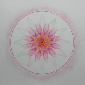 de Lotus in de Mandala