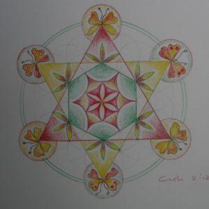 Flower of Life (1) door Carli
