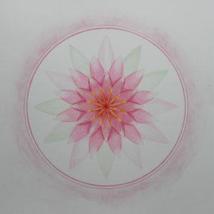 de Lotus in de Mandala