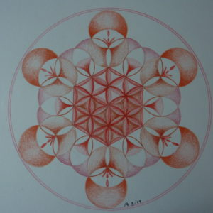 de Hexaëder in het basischakra